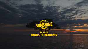 AmongstTheMangroves_Thumbnail